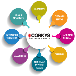 Corky's current employment opportunities