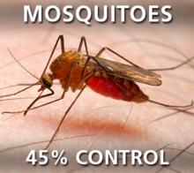 Mosquitos - 45% Control