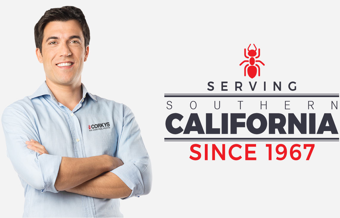 Serving Southern California Since 1967