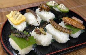 Bugs as food