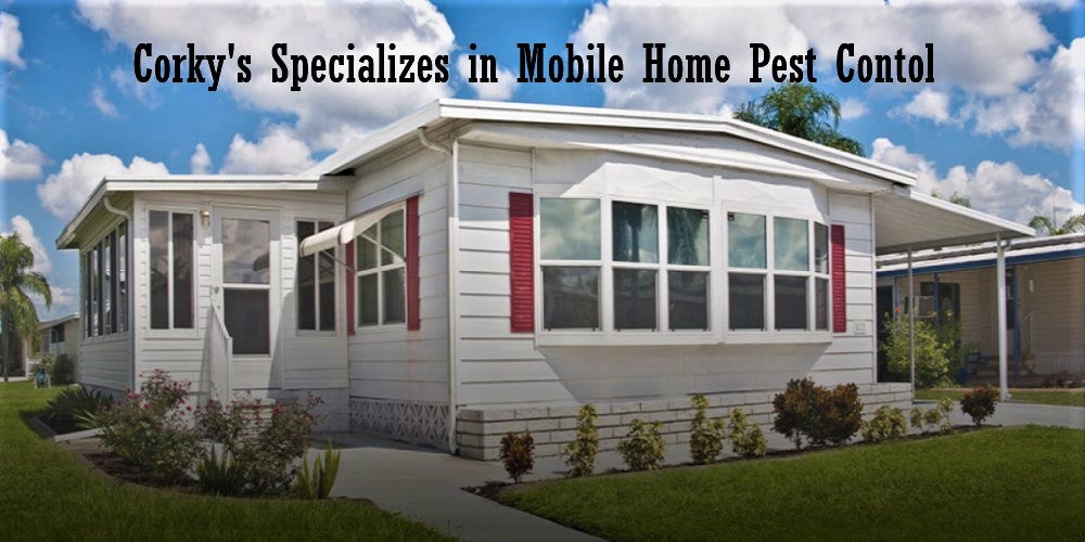 The Ultimate Mobile Home Pest Control Service: Quick Facts